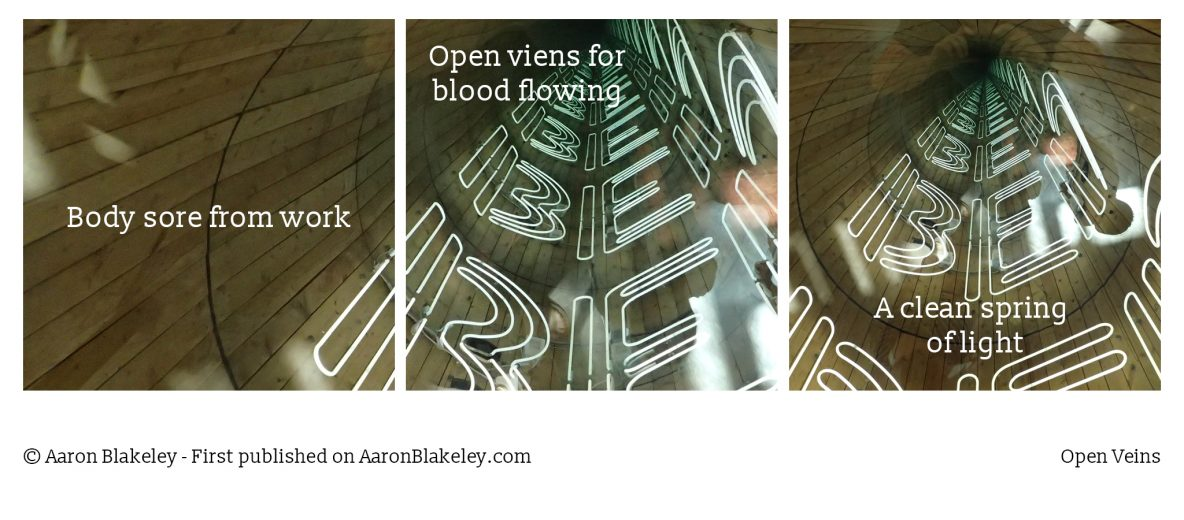 Open Veins - Aaron Blakeley - Daily Haiku Web Comic